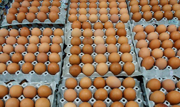 Vânzările inustriei avicole cresc cu 50% în perioada Paştelui